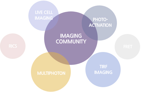 IMAGING COMMUNITY는 LIVE CELL IMAGING, RICS, MULTIPHOTON, TIRF IMAGING, FRET, PHOTO-ACTIVATION